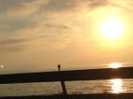 滋賀県高島市、琵琶湖